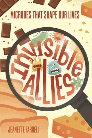 Cover art for Invisible Allies